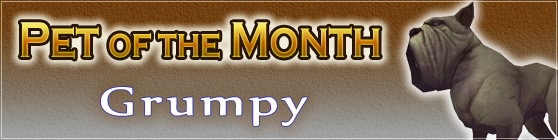 Grumpy - Pet of the Month February 2018