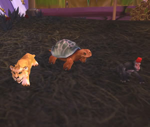 New Darkmoon Faire pets