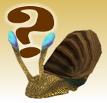 Possible snail pet