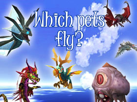 So Which Pets Fly? Click to find out!