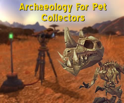 Archaeology Guide For Pet Collectors